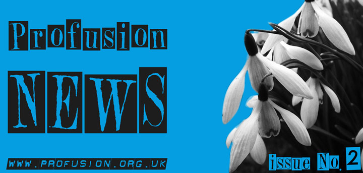 Profusion News Issue No. 2 is Out Now